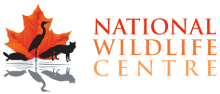 National Wildlife Centre
